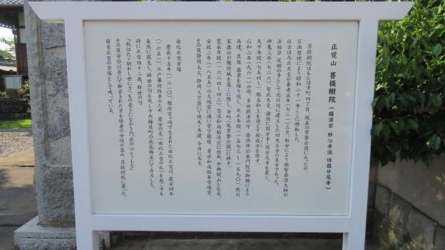 菩提樹院(葵区)
