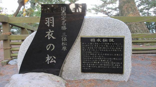 写真: 三保の松原(清水区)羽衣の松