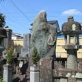 Photos: 梅蔭寺(清水区)次郎長墓