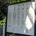 Photos: 梅蔭寺(清水区)