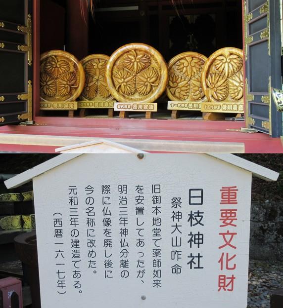 久能山東照宮/久能山城(駿河区)日枝神社