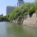 Photos: 駿府城(葵区)三の丸堀