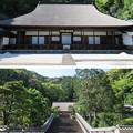 Photos: 臨済寺(葵区)本堂?