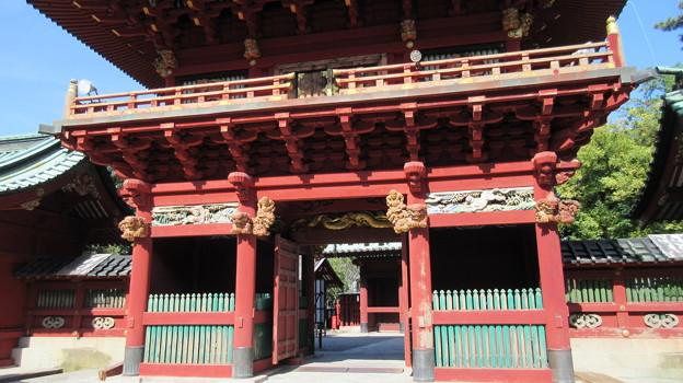 駿河国総社 浅間神社(静岡市葵区)楼門