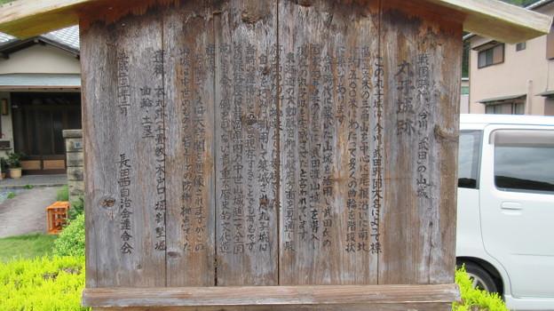 誓願寺(駿河区)丸子城
