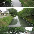 Photos: 田中城(藤枝市)六間川