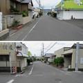 Photos: 田中城(藤枝市)平島三日月堀