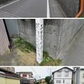 Photos: 田中城(藤枝市)大手一之堀(三日月堀)