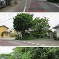 Photos: 田中城(藤枝市)三之堀土塁