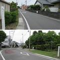 Photos: 田中城(藤枝市)大手一之門