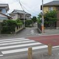 Photos: 田中城(藤枝市)二之堀