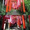 Photos: 佐助稲荷神社(鎌倉市)