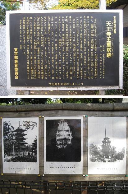 天王寺五重塔跡(都立谷中霊園)