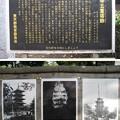 Photos: 天王寺五重塔跡(都立谷中霊園)