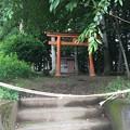 Photos: 岩櫃城(東吾妻町)天狗丸・岩櫃神社