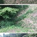 岩櫃城(東吾妻町)竪堀