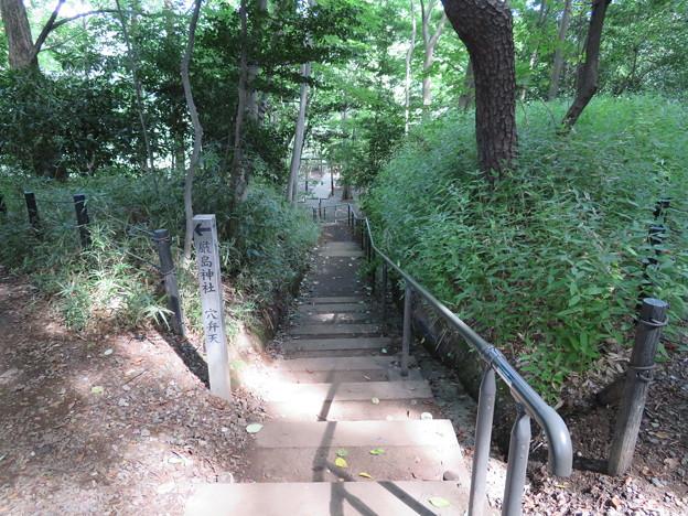 石神井城(練馬区。都立石神井公園)先は水神社