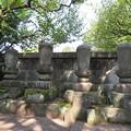 Photos: 観泉寺(杉並区)