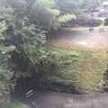 Photos: 五日市橋 秋川/来住野氏城館(あきる野市)