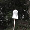 高幡城/高幡不動尊(日野市)