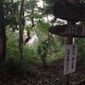 Photos: 高幡城/高幡不動尊(日野市)竪堀