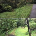 Photos: 平山城(日野市営 平山城址公園)