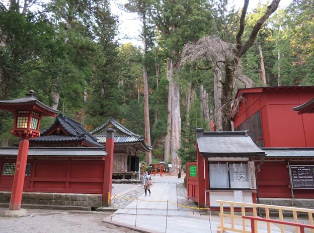 日光二荒山神社(栃木県)有料エリア行けず…