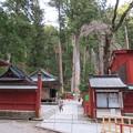 Photos: 日光二荒山神社(栃木県)有料エリア行けず…