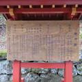 写真: 日光二荒山神社(栃木県)
