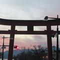 写真: 中禅寺湖畔(栃木県)二荒山神社鳥居