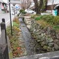 Photos: 小幡陣屋・楽山園(甘楽町小幡)雄川疏水