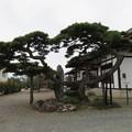 崇福寺(甘楽町小幡)本堂前