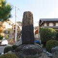 一乗寺下り松(宮本吉岡決闘之地。左京区)