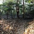 Photos: 将軍山城(左京区)虎口、先に郭