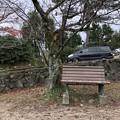 Photos: 宇治川 あじろぎの道(宇治市)宇治川の桜並木