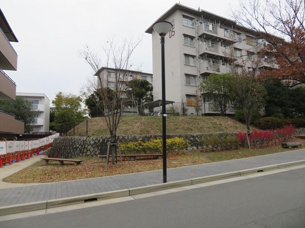 指月伏見城(伏見区)木幡山城時は蒲生秀行屋敷
