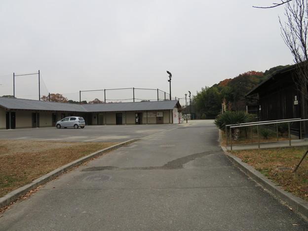 木幡山伏見城(伏見区)目前に空堀、先は出丸