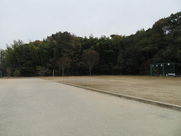 木幡山伏見城(伏見区)かつては空堀? 先は松の丸