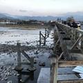 写真: 渡月橋(右京区)