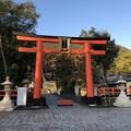 松尾大社(西京区)二の鳥居