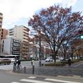 二条御所跡(中京区)