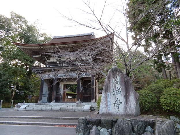 Photos: 三井寺(園城寺。大津市)仁王門