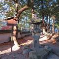 Photos: 建部大社(大津市)キリシタン燈籠