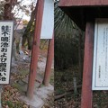 Photos: 平家終焉の地(野洲市)