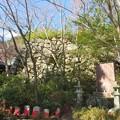 八幡山城(近江八幡市)上は二の丸
