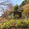 八幡山城(近江八幡市)三の丸