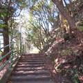 八幡山城(近江八幡市)西の丸へ