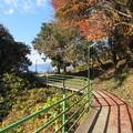 八幡山城(近江八幡市)西の丸