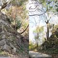 八幡山城(近江八幡市)北の丸へ