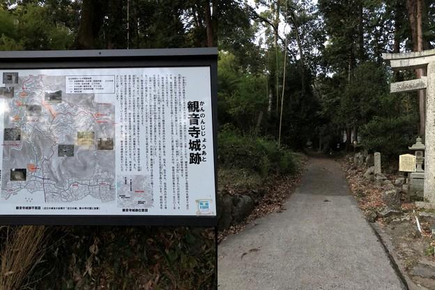 Photos: 観音寺城御屋形(六角氏館。近江八幡市)新 大手道